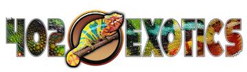 402 EXOTICS, LLC