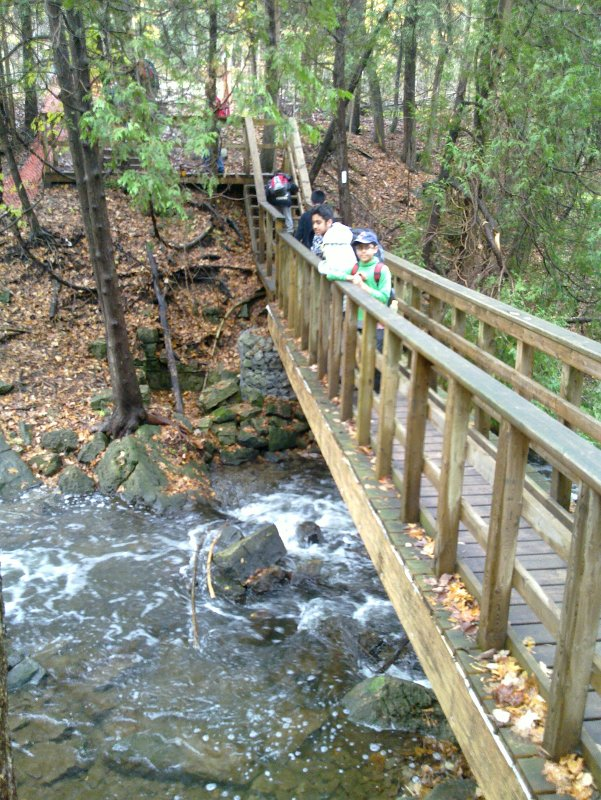 Scout Hike on the Bruce Trail, Dec. 4