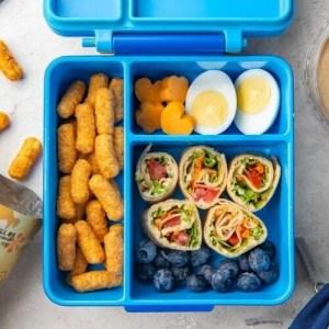 vegetarian kids lunch 5