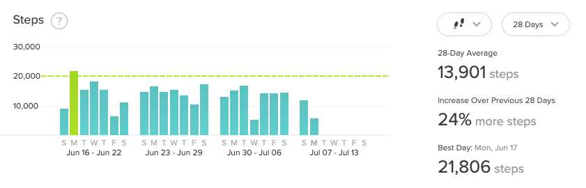 FitBit Exercise Averages over 28 Days