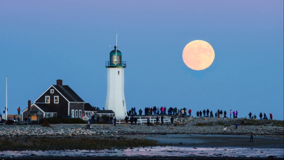 ¿Dónde saldrá la luna llena? Sun Surveyor te dice