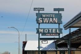 White Swan Motel, Barbara Gal