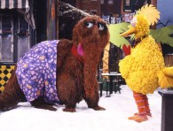 Big Bird and Snuffy