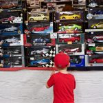 Indy inspects the wall of model cars.