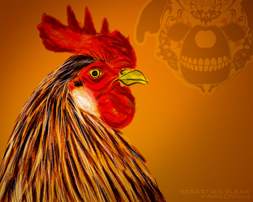 "WacomWed: 6 ""Rooster"" Adobe Illustrator CC Dynamic Sketch"