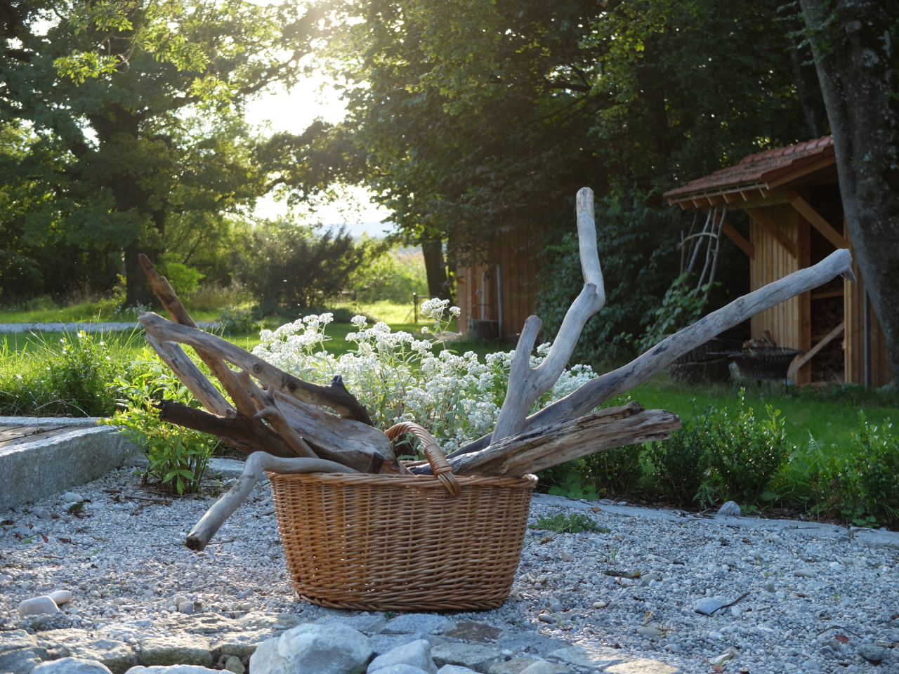 mangia minga // 'driftwood empire: collecting driftwood at lake Ammersee'