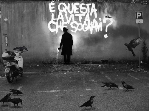 pigolio:  Crows and Life   ……E adesso sogna