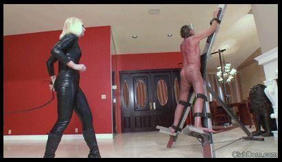 femdom whipping men