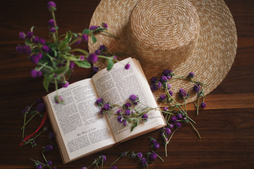 juliettetang:  Quiet afternoon at home, reading Maupassant and pressing flowers.