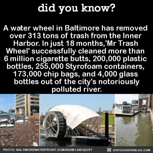 A water wheel in Baltimore has removed over 313 tons of trash from the Inner Harbor. In just 18 months,'Mr Trash Wheel' successfully cleaned more than 6 million cigarette butts, 200,000 plastic bottles, 255,000 Styrofoam containers, 173,000 chip bags, and 4,000 glass bottles out of the city's notoriously polluted river.Mr. Trash Wheel has a lot of work to do.EEEEEW.Mr. Trash Wheel also has a Twitter account.And a sense of humor. And a pretty nice view… … thanks to himself.Source Source 2