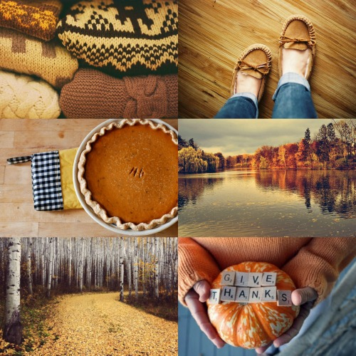 fvckingjensen:  Late Autumn/Thanksgiving Aesthetic