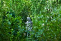 Vers le site du musée-jardin Bourdelle