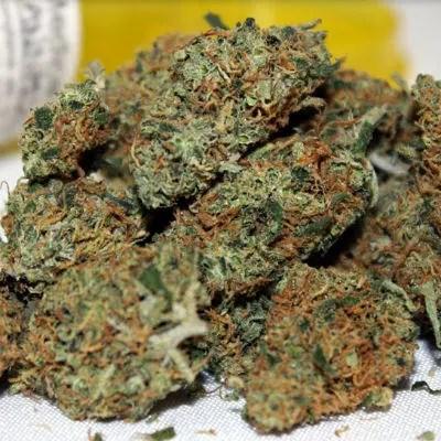 ACDC Marijuana Strain Review