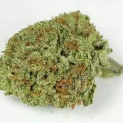 Jabba Stash Marijuana Review