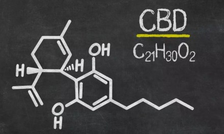 CBD Oil: Modern Day Miracle Cure