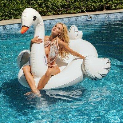Swan Mod Vaporizer Review