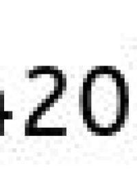 chocohongos amsterdam
