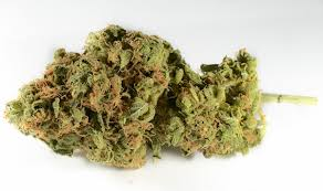 Buy chemdawg weed online-chemdawg weed for sale