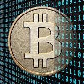 Bitcoin Payment Bonza Seeds Discount