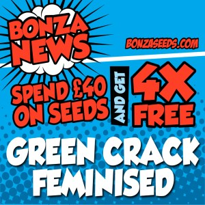 Spend 40 Bonza Seeds Deal