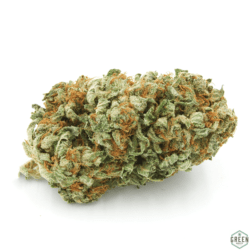 Champagne Kush Flower Green Society Coupon Code