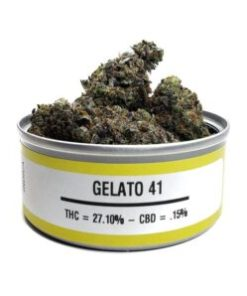 gelato 41, gelato 41 for sale, gelato 41 space monkey meds, gelato 41 space monkey strain, gelato 41 strain, gelato 41 strain for sale, gelato 41 strain for sale France, gelato 41 strain for sale Germany, gelato 41 strain for sale UK, gelato 41 weed, Buy gelato 41 marijuana strain, Buy gelato 41 online, Buy gelato 41 Space Monkey Meds Online, Buy gelato 41 strain Australia, buy gelato 41 strain online, Buy gelato 41 strain UK, Get you best gelato 41 strain online, order gelato 41 strain Australia, Order gelato 41strain online, order gelato 41 strain UK, Purchase original gelato 41 online, space monkey, space monkey gelato 41 strain, space monkey meds, space monkey strain, the gelato 41 strain, Where to Buy gelato 41 Space Monkey Meds, where to buy gelato 41 strain
