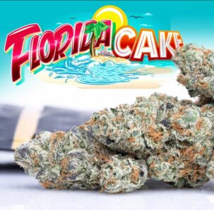 Buy Florida Cake Jungleboys, buy jungle boys florida cake, buy jungle boys florida cake online, buy jungle boys online, Buy Jungle Boys strain, buy jungle boys wedd online, jungle boys, jungle boys florida cake, jungle boys florida cake strain, jungle boys weed, jungle boys weed strain, jungle cake jungleboys delivery, Order Florida Cake Jungleboys, Order jungle cake jungleboys, Purchase jungle cake jungleboys, Shop Florida Cake jungleboys