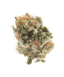 best place to buy weed online, best places to buy online, buy ak47 online, buy brass knuckles in uk, buy cannabis online, buy god father og weed, buy godfather og kush, buy godfather OG strain online, buy godfather online, buy illegal weed online, Buy marijuana, buy marijuana in australia, buy marijuana in usa, buy weed, buy weed edibles online, buy weed online, buy weed online reddit, buy weed online review, godfather, Godfather OG, godfather og for sale, godfather og marijuana shop, godfather OG strain for sale, godfather strain, Granddaddy Purple, is it safe to buy weed online, order godfather og weed, shop for god father OG near you, shop for godfather OG strain online, where can i buy weed online legally, Where To Buy Weed Online