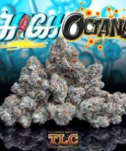 buy Jungle Boys High Octane online, buy weed packs online, heirloom og, hi octane fuel, hi octane orange, hi octane pills, hi-octane, high octain, high octane, high octane concentrates, high octane image, high octane og, high octane og all bud, high octane og genetics, high octane og leafly, high octane og lineage, high octane og sc labs, high octane og strain, high octane og strain info, high octane og strain leafly, high octane og strain review, high octane og x gelato, high octane og x gelato 33 review, hioctane, jungle boys, jungle boys bags, jungle boys carts, jungle boys clothing, jungle boys dispensary, jungle boys extracts, jungle boys high octane, jungle boys high octane og, Jungle Boys High Octane online, jungle boys instagram, jungle boys packaging, jungle boys seeds, jungle boys seeds for sale, jungle boys strain, jungle boys strains, jungle boys wedding cake, octane review, og kush high, orange octane, weed packs for sales, weed packs online