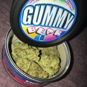 buy big smokey farms gummy bear online