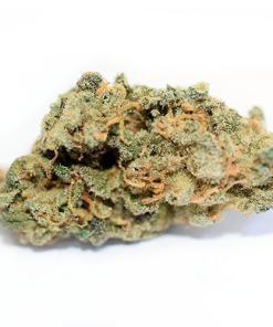 cookie monster strain