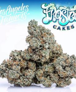 JUNGLE BOYS FROSTED CAKES FOR SALE,Buy Florida Cake Jungleboys, buy jungle boys florida cake, buy jungle boys florida cake online, buy jungle boys online, Buy Jungle Boys strain, buy jungle boys wedd online, jungle boys, jungle boys florida cake, jungle boys florida cake strain, jungle boys weed, jungle boys weed strain, jungle cake jungleboys delivery, Order Florida Cake Jungleboys, Order jungle cake jungleboys, Purchase jungle cake jungleboys, Shop Florida Cake jungleboys