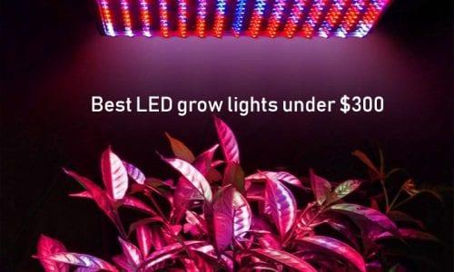 Best Cob Led Grow Light