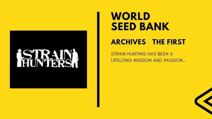 新シリーズ:シードバンクアーカイブス 第一回 「STRAIN HUNTERS」 ストレイン ハンターズ
