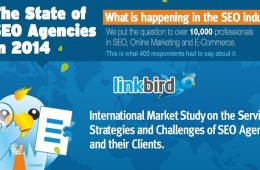 the state of SEO in 2014 - infographic