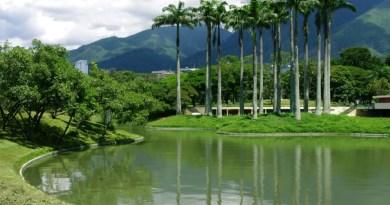 El Parque del Este es uno de los principales espacios de recreación de Caracas y Miranda/Cortesía