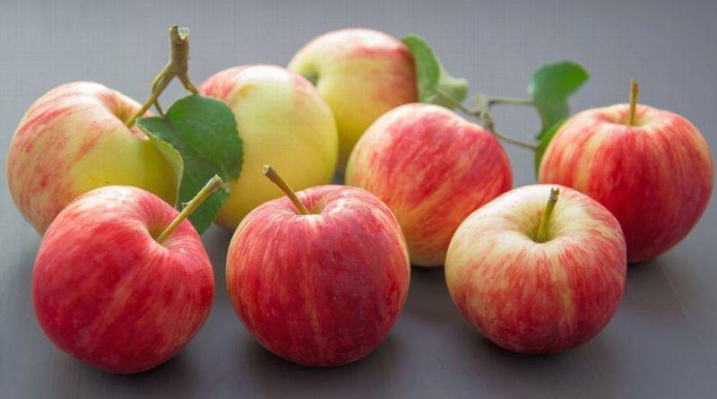 Al quitar la piel de frutas como la manzana se desperdicia hasta el 11% de su contenido de fibra/Espnrun.com