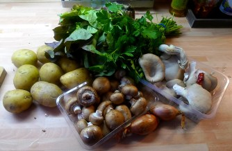 30.1.16 - Pilze,Kartoffelstampf,Salat,vegetarisch (2a)