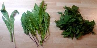 19.6.16 - Coucous,Wildsalat,Guacamole,Möhren (7)