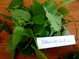 Grüne Soße aus Wildkräutern,Pellkartoffeln,Joghurtspeise mit Waldhe3idelbeeren (14)