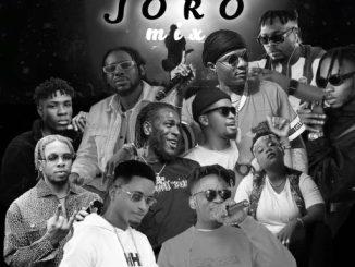 DJ MIX: Dj Vip - Joro Mix