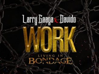 Music: Larry Gaaga ft. Davido – Work (Living In Bondage)