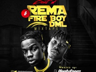 DJ PlentySongz - Best Of Rema & FireBoyDML Mixtape