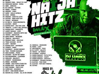 DJ Limbo Nigeria - 2019 Naija Hitz Mix (TPM vol.21)