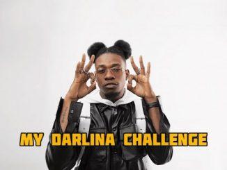 Instrumental + Hook King Perryy – My Darlina