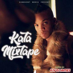 DJ MIX: Kjv Dj James Ft. Tekno - The Kata Mix (Afrobeat / Dancehall)