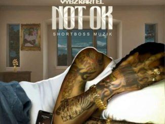 Vybz Kartel – Not Ok
