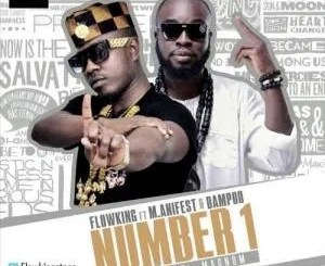 Flowking Stone Ft M.anifest, Dampoo – Number 1