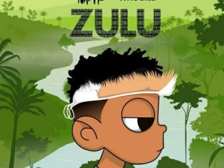 Nasty C – Zulu Mixtape