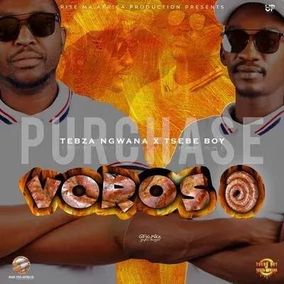 Tsebe Boy & Tebza Ngwana ft Le Ray x White Nigh – Voroso